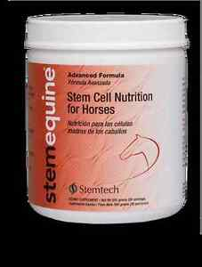 StemPets FLA - Stem Cell Nutrition for Horses