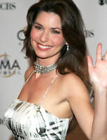 Shania Twain Tickets - Compare all tickets from $85
