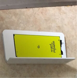 G5 spare battery back