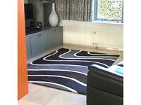 Beautiful contemporary quality rug