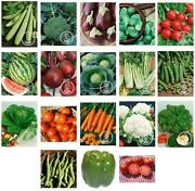 Vegetable Seeds Lot