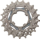Campagnolo 11 Speed Bicycle Cogs