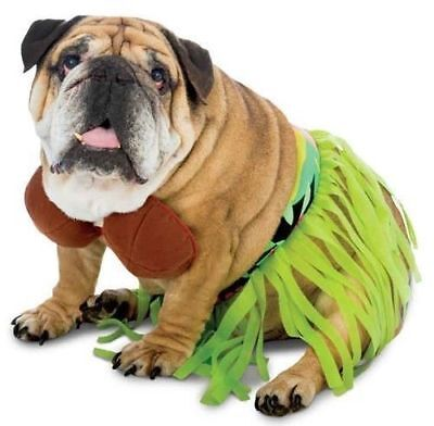 Funny Zelda Wisdom Hula Dog Pet Costume Halloween Bra Skirt Hawaii Hawaiian New