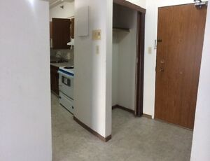 2 BR Apartment Downtown!! Family & Pet Friendly!!