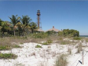 Looking for Land or a Home in warm, sunny Florida ? Contact me !