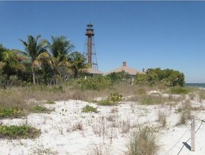 Looking for Acreage or a Home in sunny Florida ? Contact me !