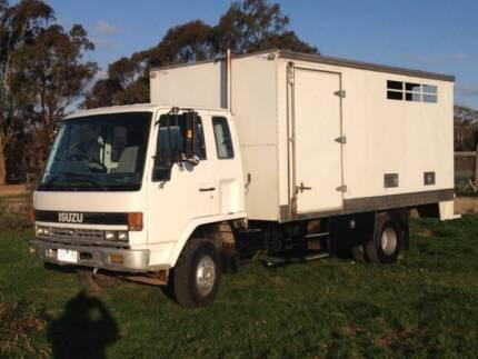 Isuzu Horse Truck Echuca Campaspe Area Preview