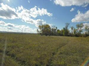 Hobby Farm on 158 acres of land beautifully located.