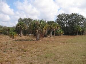 4+ Acres in SW Florida (near Fort Myers) - build an Estate Home!
