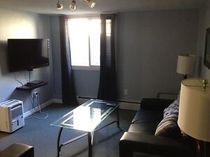 Beautiful Fully Furnished 1 Bedroom Unit
