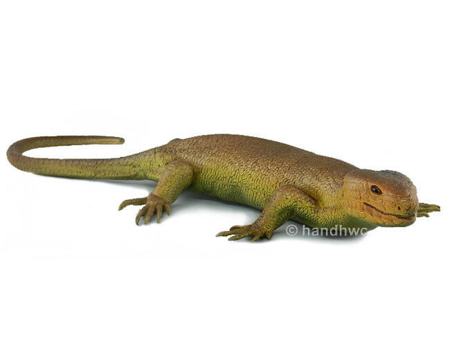 AAA 29244 Solomon Islands Tree Skink Lizard Toy Reptile Model Replica - NIP