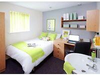 A Premium Student Room in Lancaster