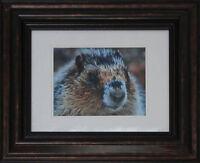 "New Marmot Framed Giclée Print 12"" x 14"" Frame"