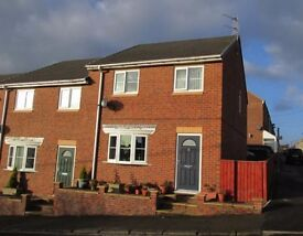 Lovely 3 Bed End Terrace House Available Now Ushaw Moor NO FEES