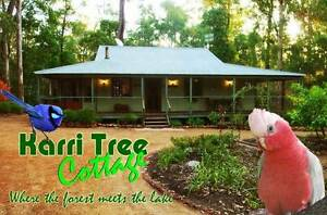Karri Tree Cottage Pet Friendly Accommodation Pemberton WA Pemberton Manjimup Area Preview