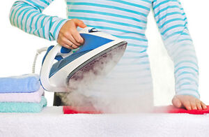 T-FAl Steam Iron ONLY $25