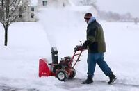 """Houdini's Snow Removal. """"Now you see it Now you don't"""""""