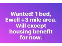 Looking for 1 bed, Ewell surrounding areas