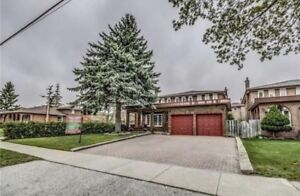 Beautiful house for sale near UofT of Scarborough
