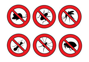 Temporary sale on all pest control services! Call now!