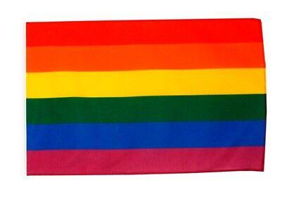 hwulen Fahnen Flaggen 30x45cm (Regenbogen-banner)
