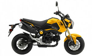Looking for Honda Grom