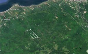 Terres, lots à bois, territoire de chasse, Cap-Chat,