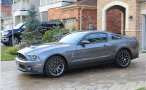 2011 SHELBY GT500 MUSTANG - MINT MINT