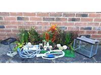 Fishtank. Plastic Plants, Decor, Treatments, Accessories Job Lot