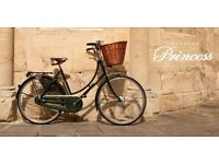 Pashley princess bike vintage basket Retro Brooke saddle