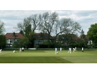 Wanted - players for Finchley Cricket Club in North London