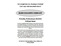 BLISS CLEANING COMPANY £10 per hour Friendly, Professional, Reliable 15 years' experience