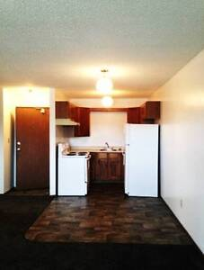 Amazing 1BD Apartments Available