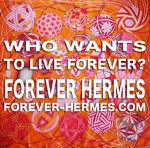 FOREVER-HERMES.COM