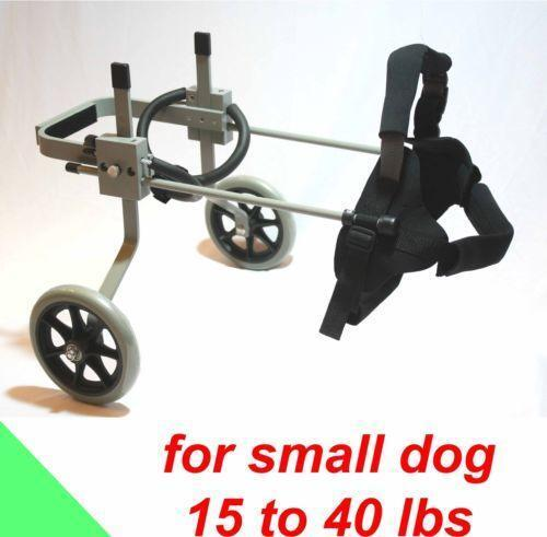 Small Dog Wheelchair Ebay