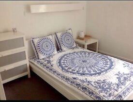 Spacious double room to rent in quiet home