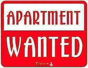 Apartment Wanted Semi-Furnished