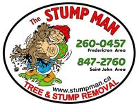 Stump Grinding - Stump Removal - Tree Service