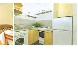 One bed flat for rent in Polwarth, GCH and double glazing in quiet street.