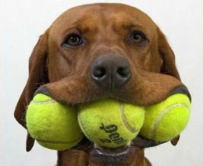 NEW , (NOT USED ) TENNIS BALLS IDEAL FOR KIDS, COACHING, DOGS, CRICKET, BEACH