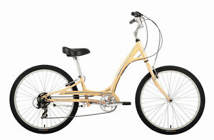 Manhattan Smoothie for electric trycicle