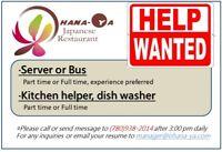 Kitchen Helper and Dinning Server
