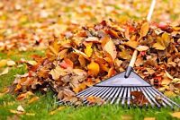 Booking Fall Clean Ups Now!