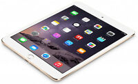 32gb iPad Mini 2 with case