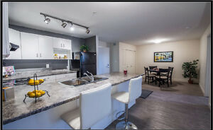 Luxury 2 Bedroom Apartment for Sublet!
