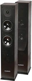 Floorstanding Speakers (MUST GO)