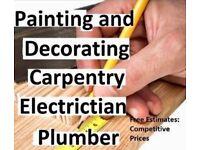 Handyman/Odd Job man/Gardener/Painter