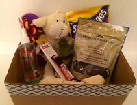 Box of treats, toys, accessories for dog (8 items)