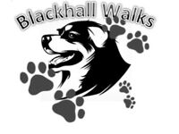 Blackhall walks - Dog walker