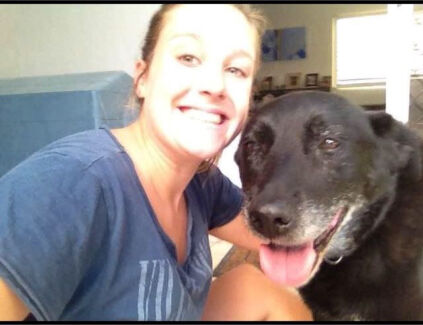 House care and Pet sitter
